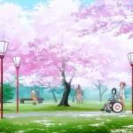10A_桜の中を散歩